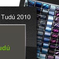 Calendario 2010 de pared